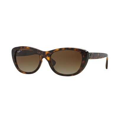 BRÝLE Ray Ban RB 4227 710/T5
